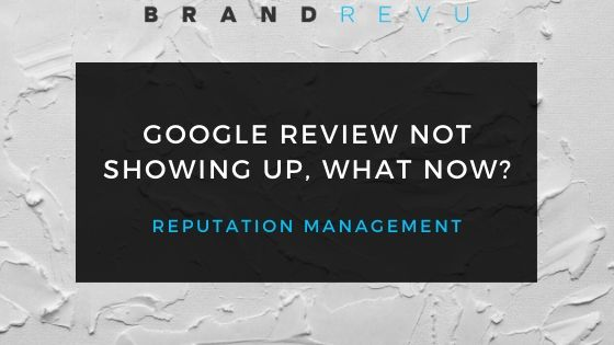 Google Review Not Showing Up (Blog Cover)