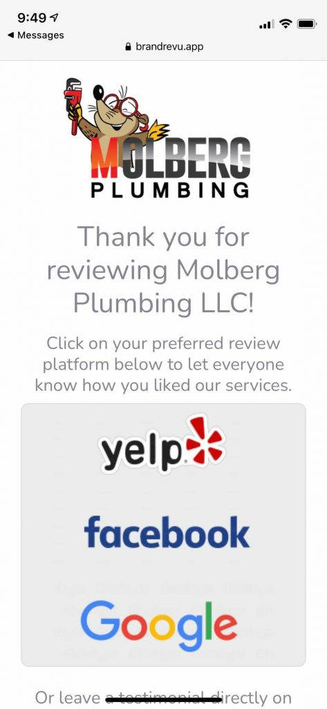 Example of Molberg Plumbing Review Request