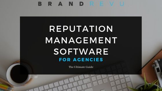 Reputation Management Software for Agencies: The Ultimate Guide (Cover)